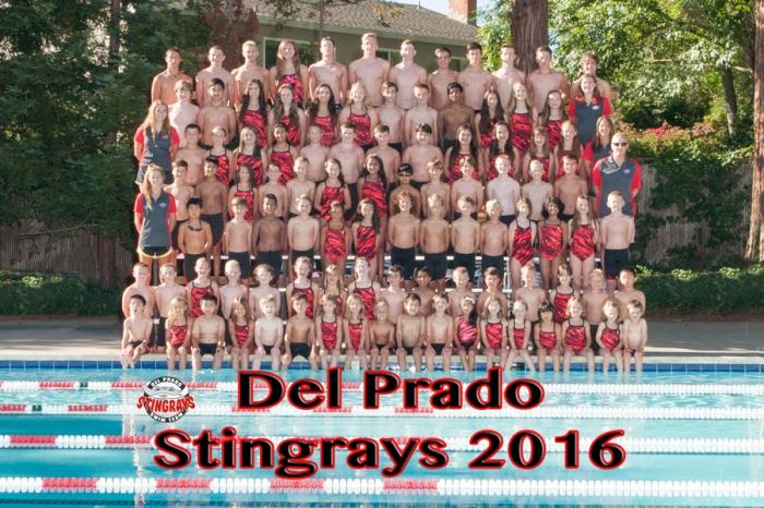 Stingrays2016